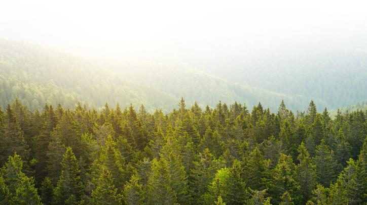 BRITA sustainability waterfall green meadow