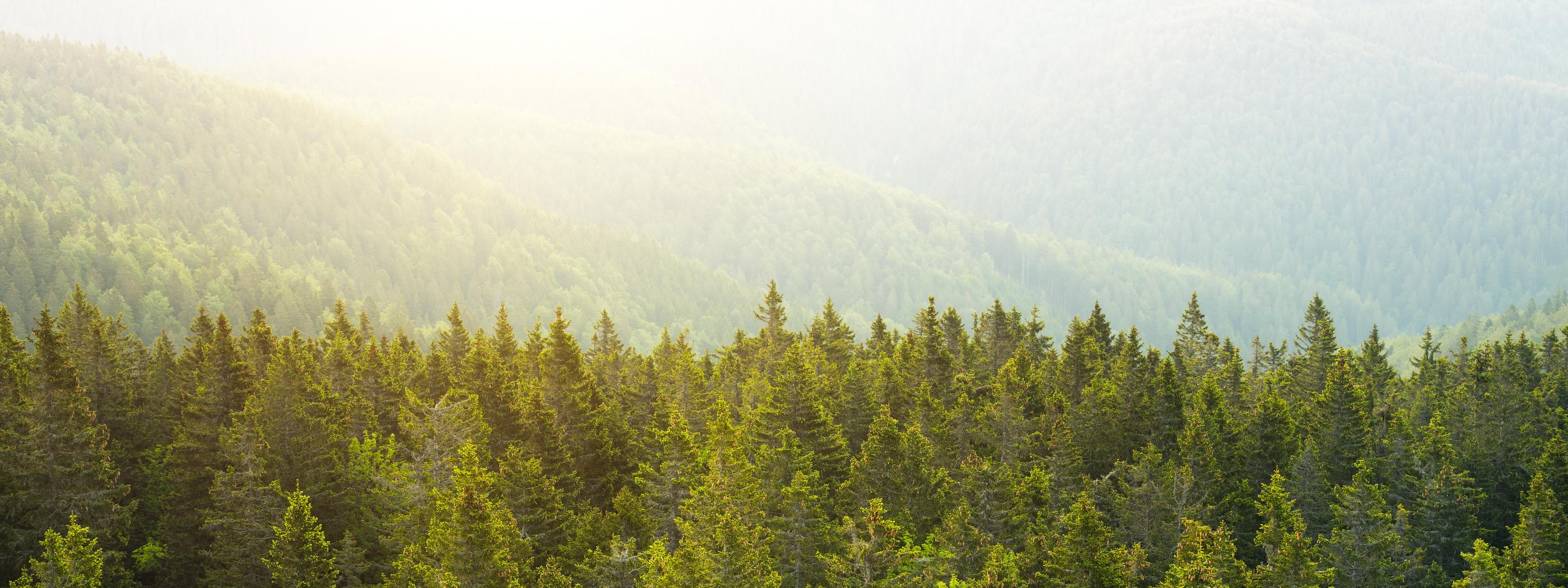 BRITA Nachhaltigkeit Wasserfall grüne Wiese