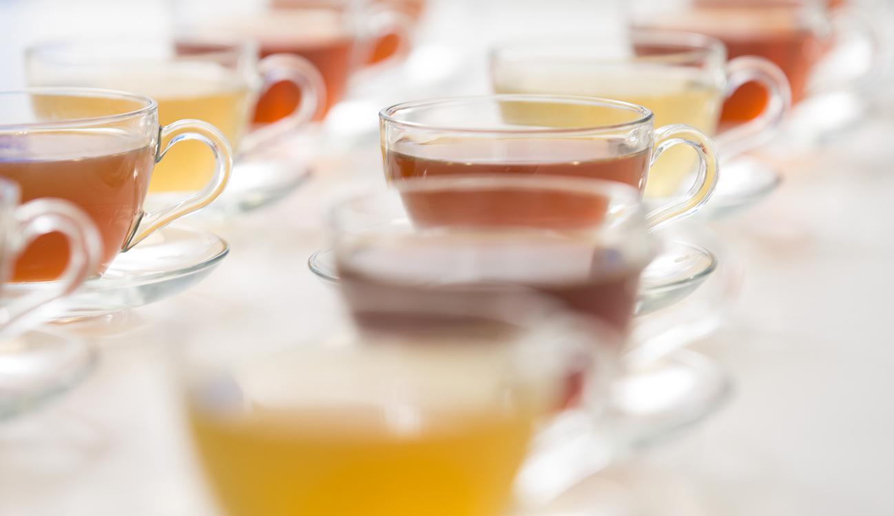 Cata de té del laboratorio sensorial de BRITA