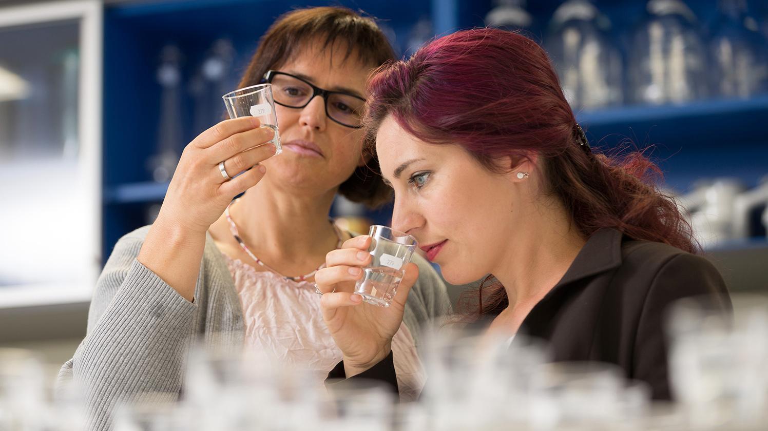 Test de l'équipe du laboratoire sensoriel de BRITA