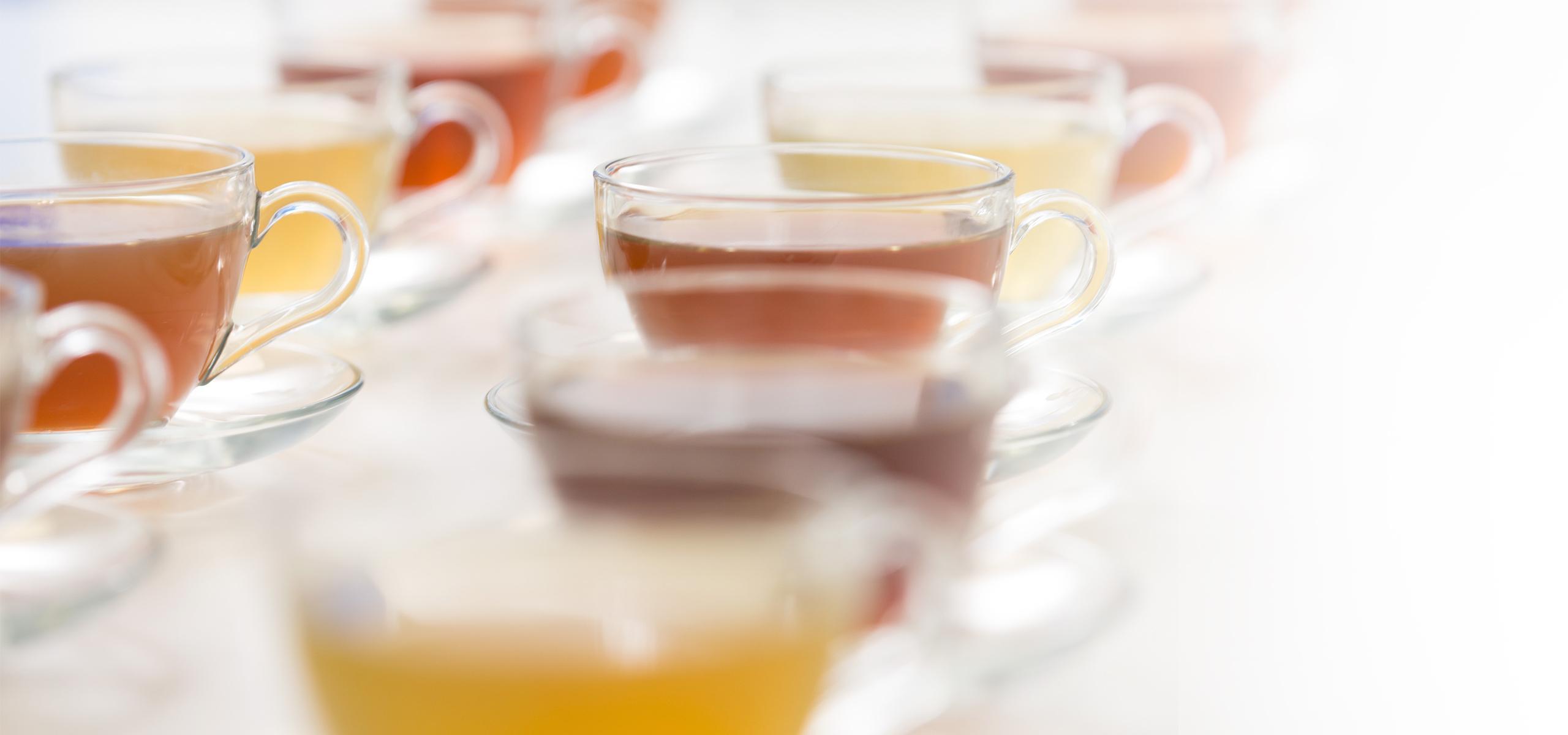 Test de thé du laboratoire sensoriel de BRITA