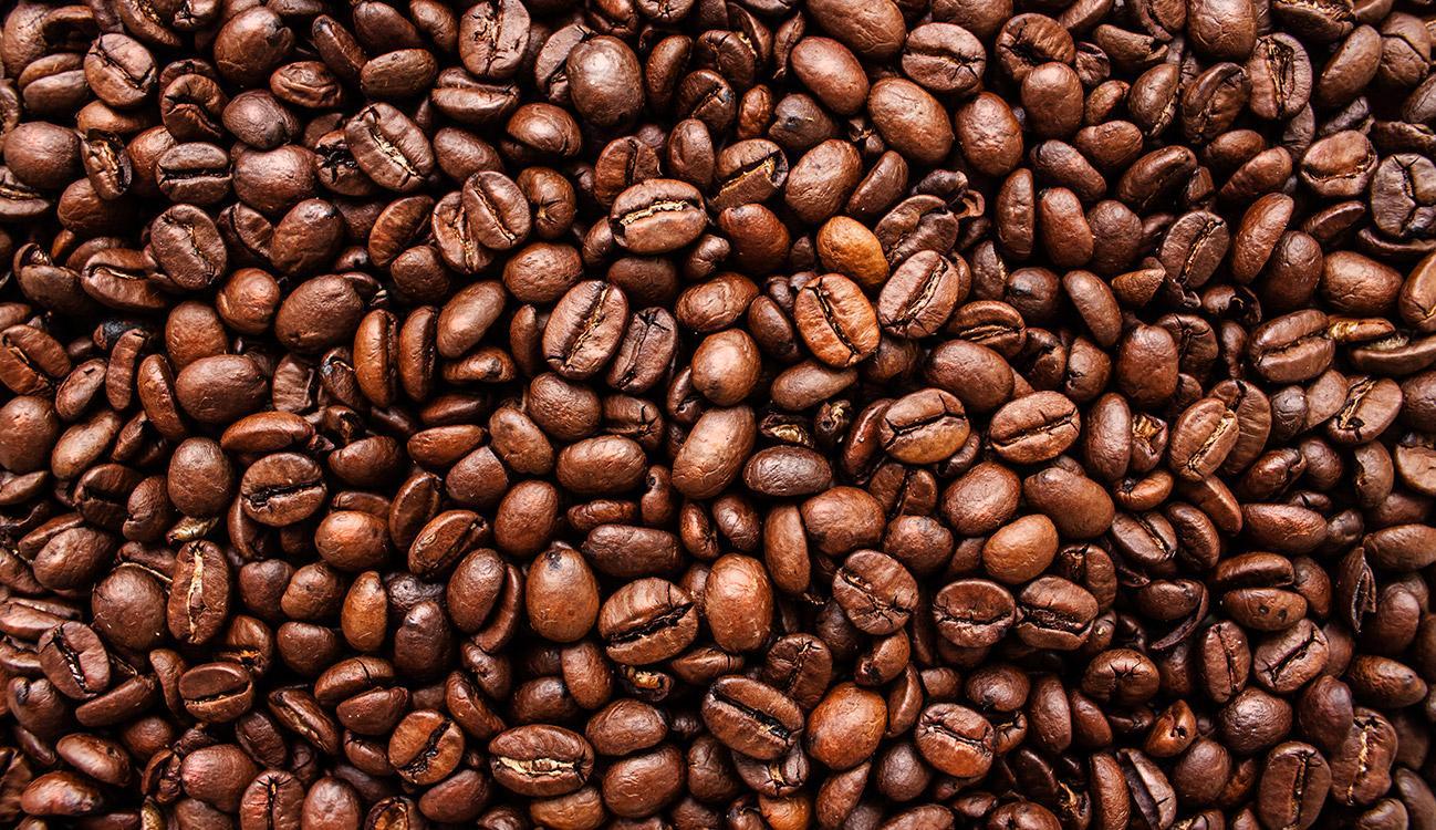 BRITA kawa ziarna kawy