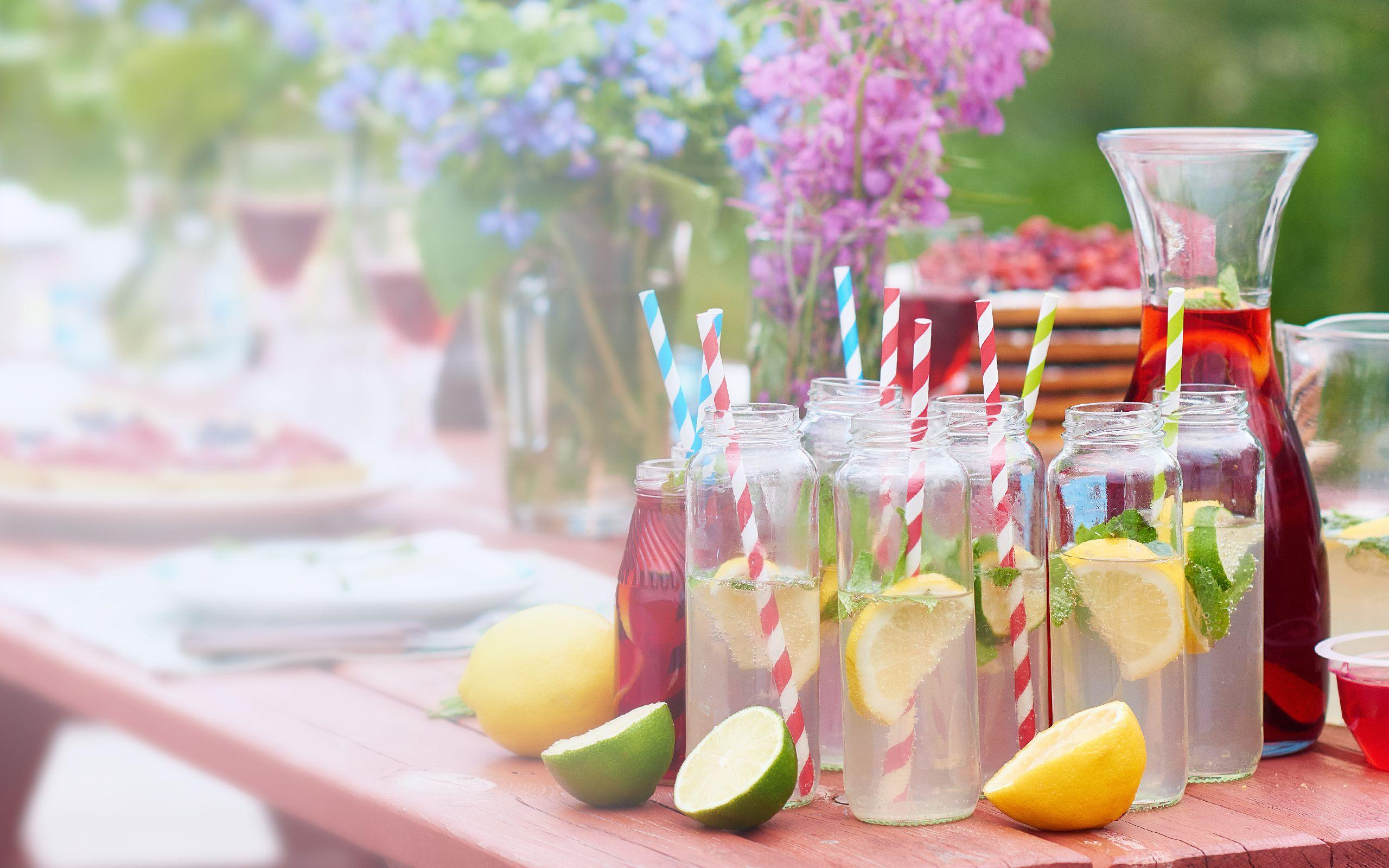 BRITA ice cubes with fruit garden party