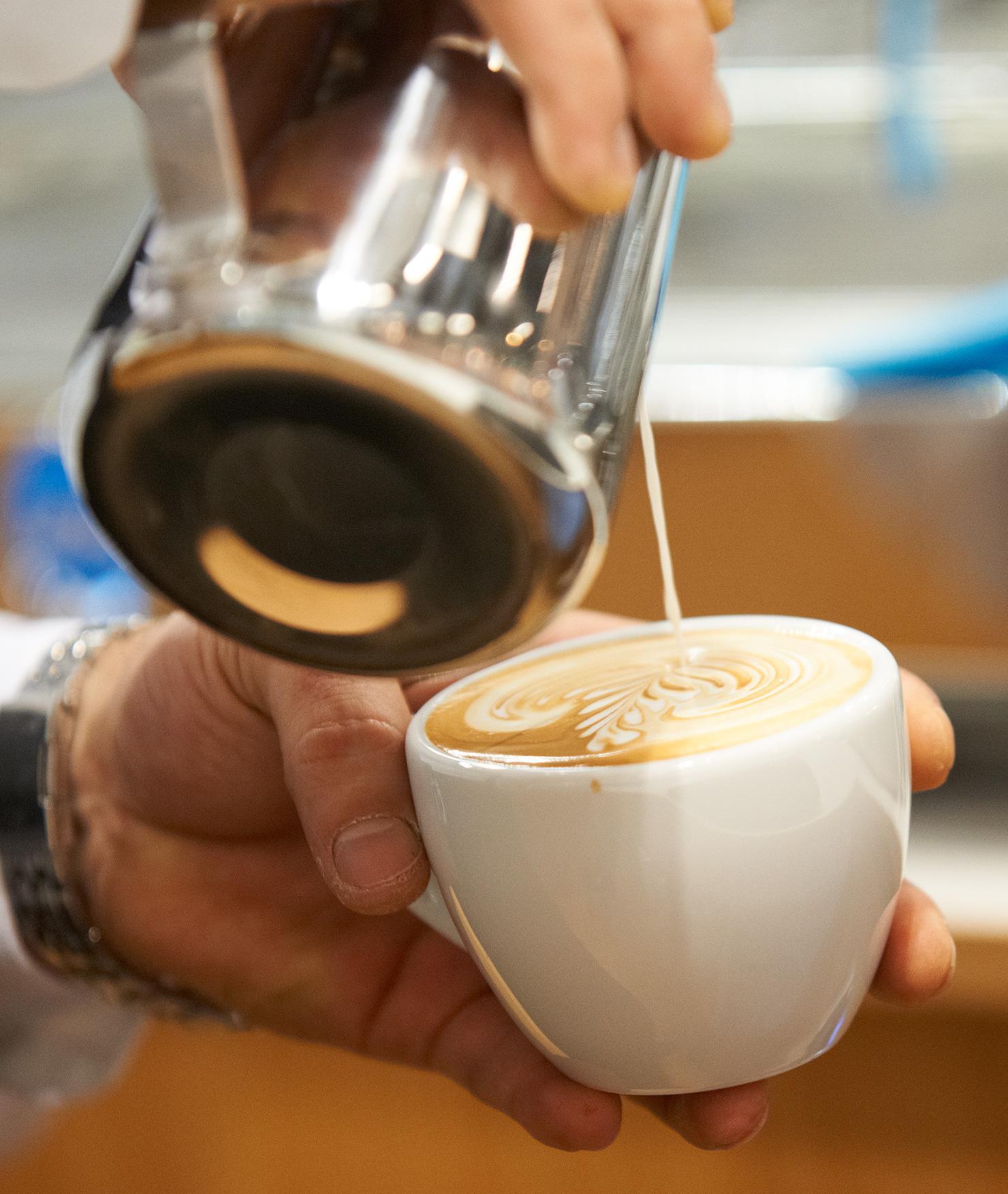 Filtr BRITA PURITY Fresh C50 barista cappuccino