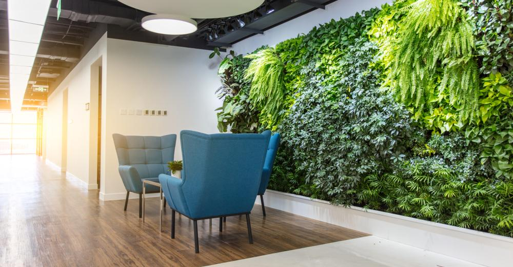 Plants in Office - Sustainable workplace design