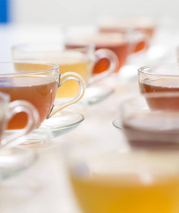 BRITA 感官實驗室 茶水測試